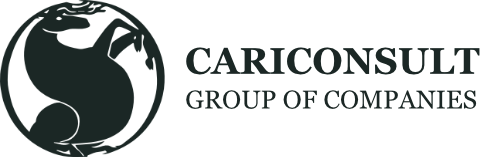 Cariconsult International Ltd.