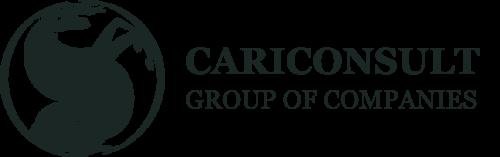 Cariconsult International Ltd.